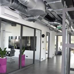 donice biuro rozowe
